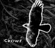 Crowz (Unofficial)