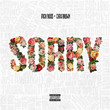Sorry (Ft. Chris Brown)