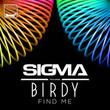 Find Me (Ft. Birdy)