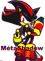 MétaShadow