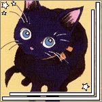 blackcat9