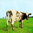 Atom Heart Mother (1970)