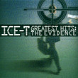 The Evidence (2003)