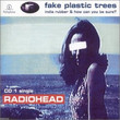 Fake Plastic Trees (1995)