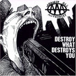 Destroy What Destroys You (1996)