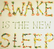Awake Is The New Sleep (2005)