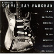 A Tribute To Stevie Ray Vaughan (1996)