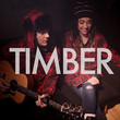 Timber (feat. Alex G) (Acoustic Version) [Single]